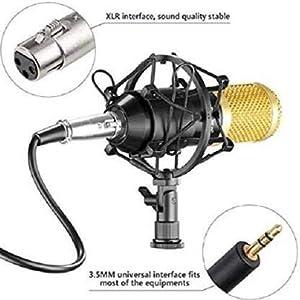 BM 800 Microphone Set