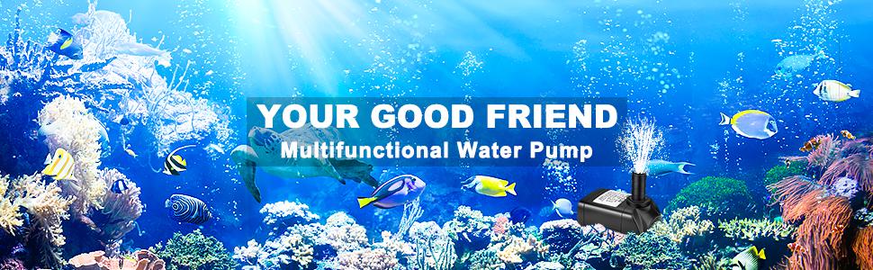 Multifunctional water pump