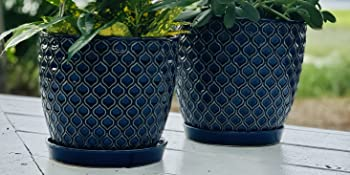 Blue Embossed Ceramic Planter Pot Set with Trays