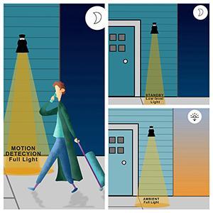 motion sensor wall light