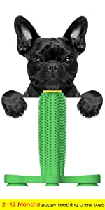 2-12 Months puppy teething chew toys