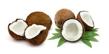 Coconut Carbon