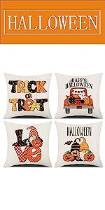 Halloween Pillow Covers