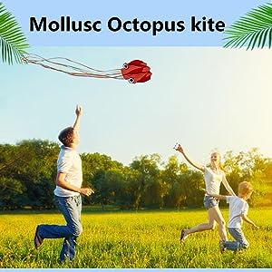 Mollusc Octopus kite