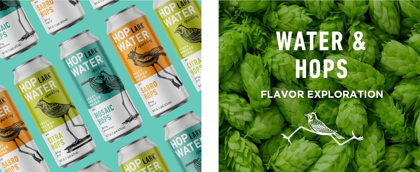 Hoplark HopWater Craft Brewed Water with Hops Ingredients Water and Hops