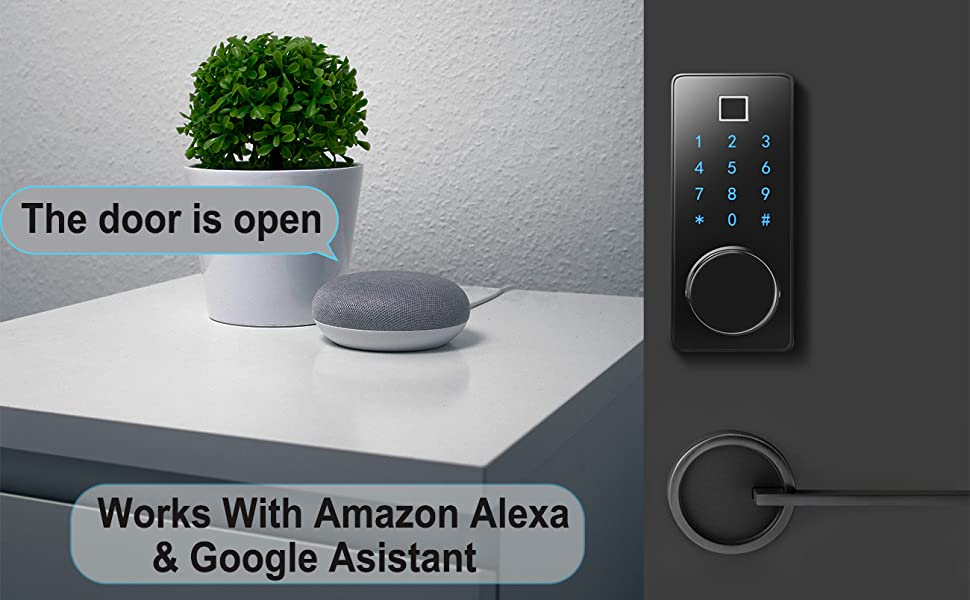 smart lock work with alexa and google assistant