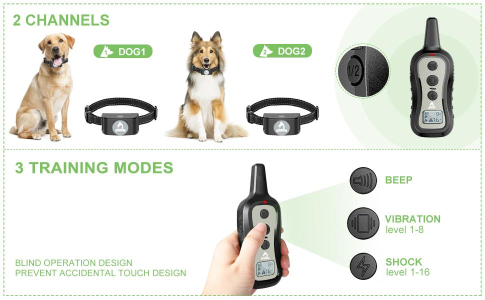 dog shock collar