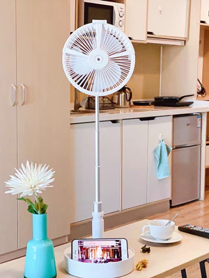 Multi-function fan