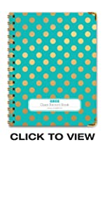 Gold Dots Turquoise Cover