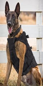 black k9 tactical harness