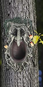 Green man tree face decor