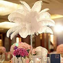 Ostrich Feather Home Decorations