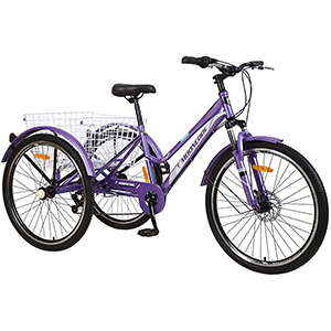 Purple mountain tricycle