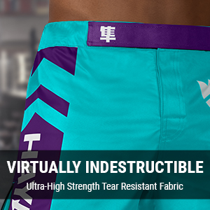 Teal and Purple Hayabusa Icon Fight shorts for MMA, BJJ