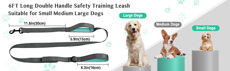 Safety Leash Walking Lead for Medium to Large Dogs