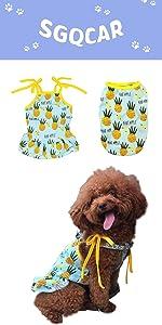 Pineapple Dog skirt shirt