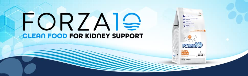 Forza10 logo with text Clean Food for Kidney Support and renal bag on the right
