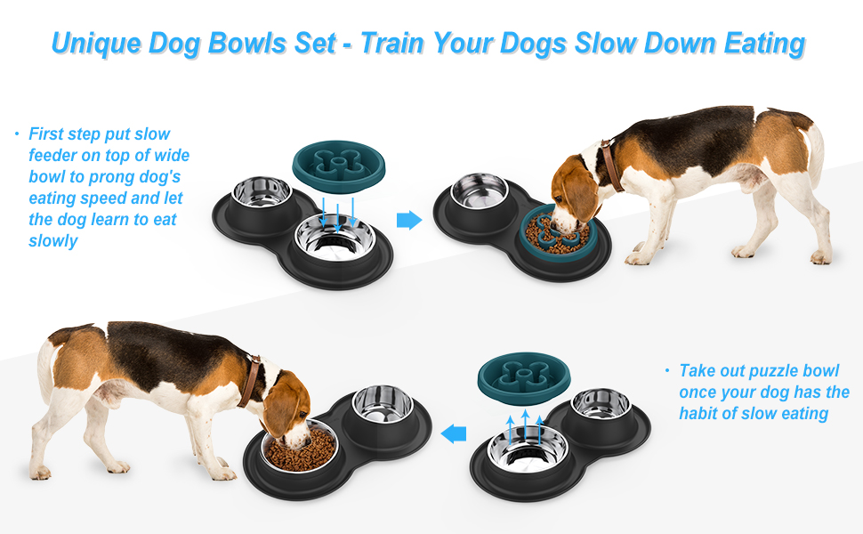 dog bowl slow feeder