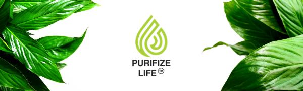 logo purifize