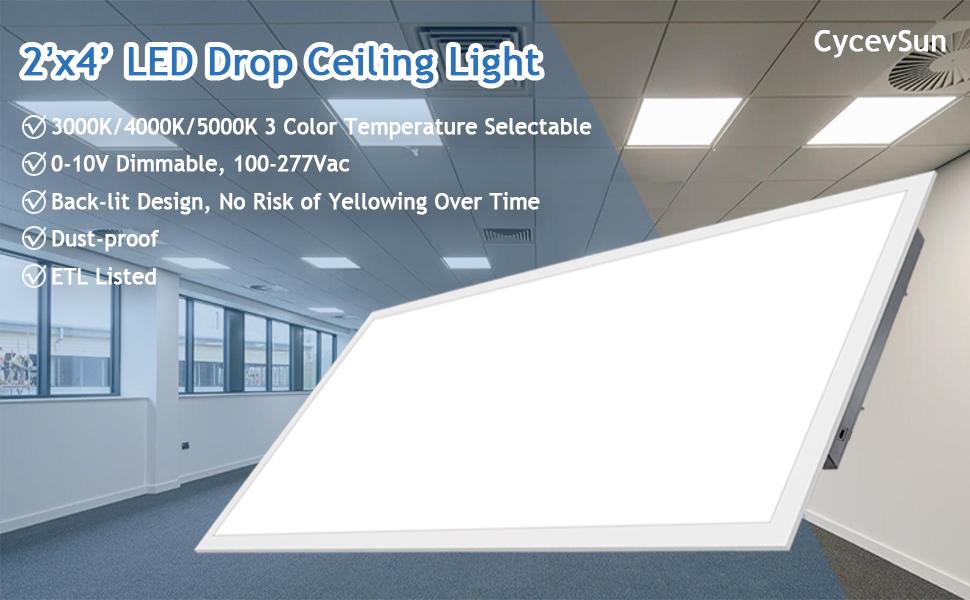 2x4ft led light