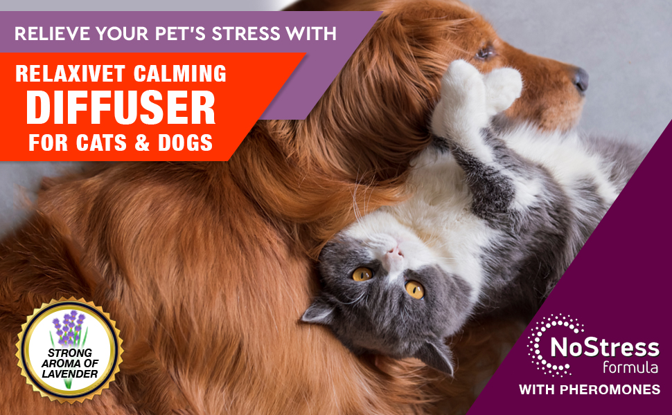 pheromome diffuser for dogs and cats calming anxiety refill stress relief