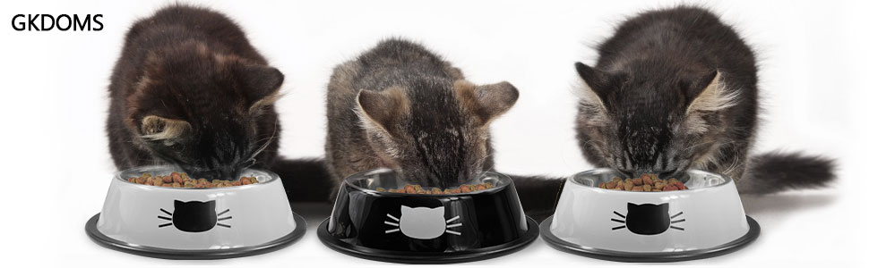 cat bowls stainless steel cat food water bowl 2 pack