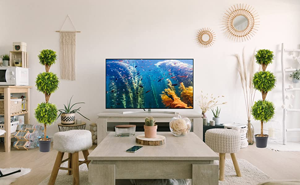 Home and Office Décor