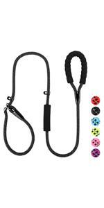 slip lead dog leash