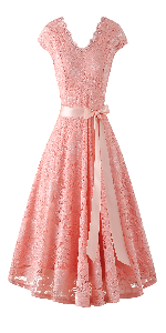 women cap short sleeve lace dress