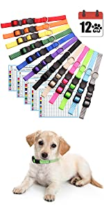 puppy collars for litter