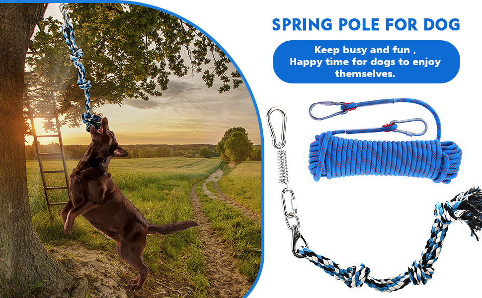Spring Pole Dog Rope Toys