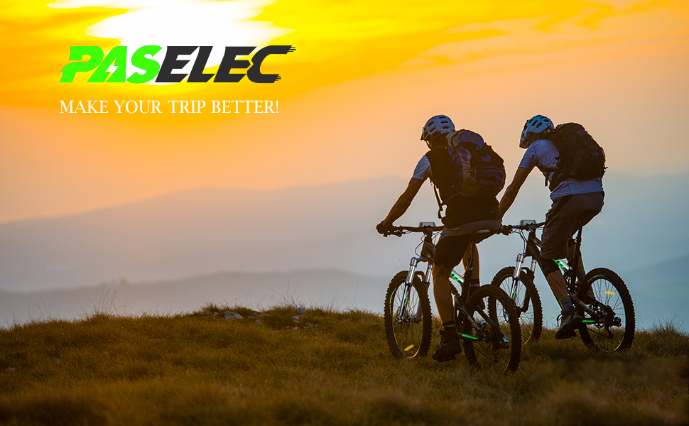 paselec electric bike