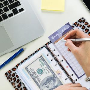 budget sheet cash envelope book