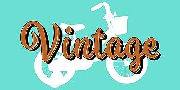 vintage retro bike