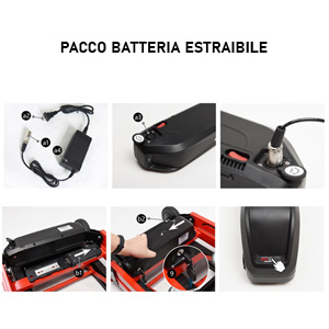 pacco batterie