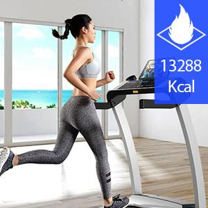 Calories calculated automatically IP68