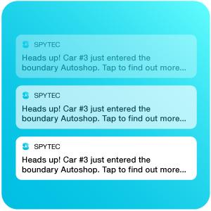 text and push alerts on boundary exit and entry, speeding alerts and more