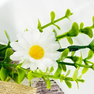 Attractive daisy and artificial green plants