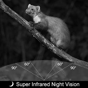 mini trail camera