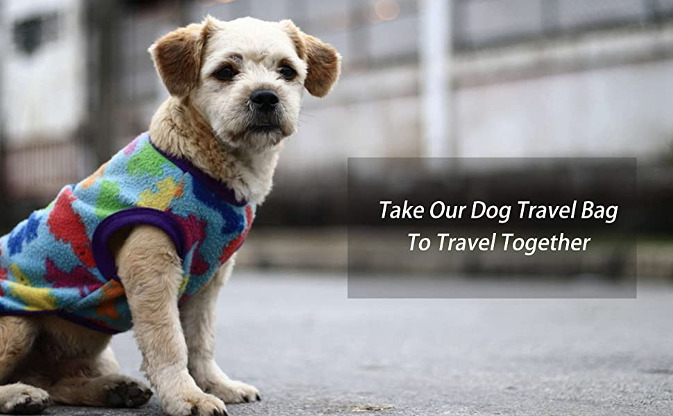 Take Our Dog Travel Bag To Travel Together