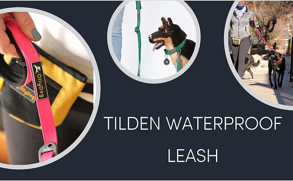 ollydog tilden leash