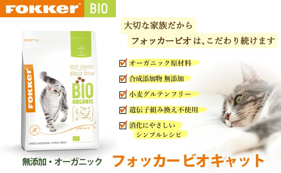 Cat_2.5kg_Cover_960x600