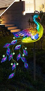 peacock solar lights