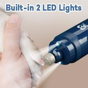 2 LED light