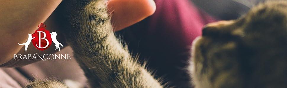 ブラバンソンヌのロゴと、人間の手にハイタッチしている猫の写真。