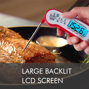 Thermometer for meat f
