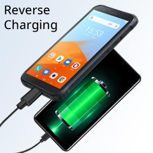 Reverse Charging