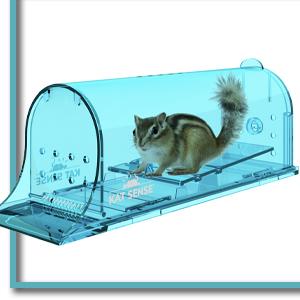 mouse traps no see kill mouse traps no kill