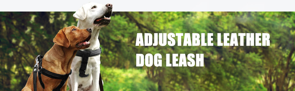 5.4FT 6.5Ft Long Dog Training Leashes for Large Medium Dogs,Traffic Handle for Extra Control