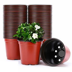 plastic plant pots